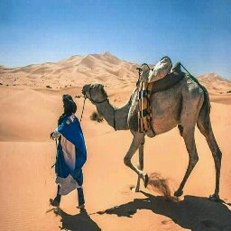 Avatar - Desert Espace