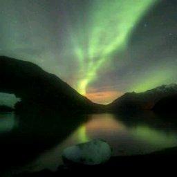 Avatar - Aurora