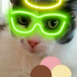 Avatar - UC Kat