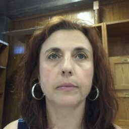 Ana Arminda Moreira - portada