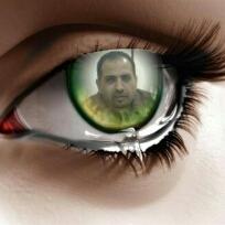 Avatar - Ali Alshiap