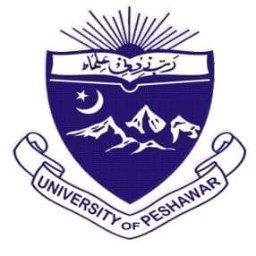 Sawood Khan - cover