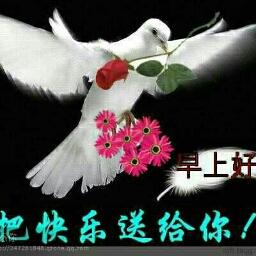 爱的传递。lou13600322689 - cover