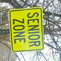 Senior Zone - cover