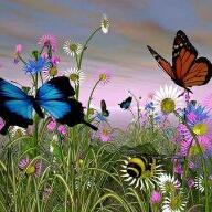 Avatar - زهرة ربيع