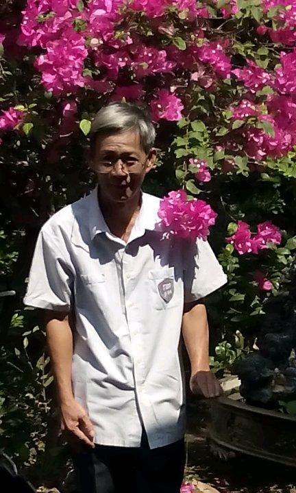 Avatar - Nguyen Mai Phuong