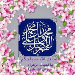 حيدر ابو صفاوي - cover