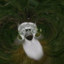 Avatar - Hades Herald