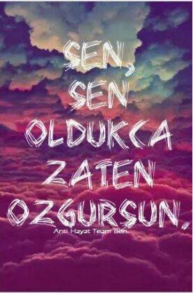 Betül Özkaya - cover