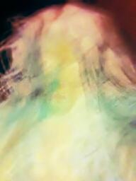 Avatar - Daryl Delp