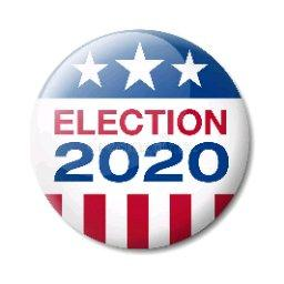Avatar - Election 2020