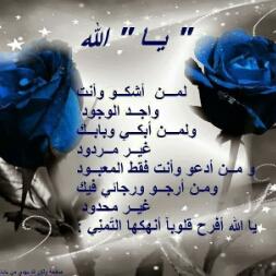 Avatar - محمد محمد