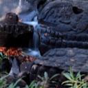 Avatar - SAFARI狩猎人