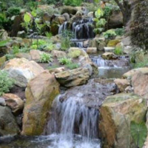Avatar - Turpin Landscaping