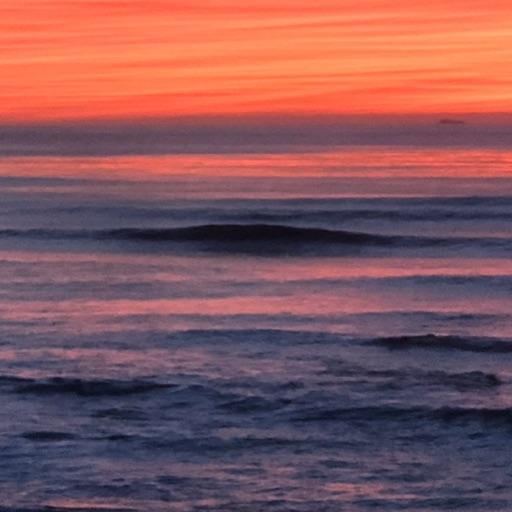 Surf SoCal - portada