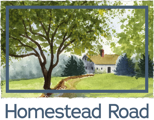 Homestead Road - cover