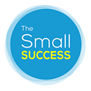 The Small Success II - cover
