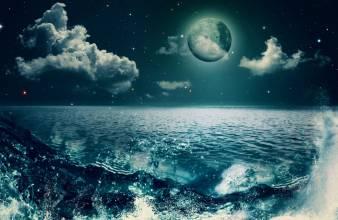 Avatar - 海偌
