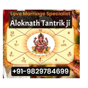 Aloknath astrologer in Rajasthan - cover