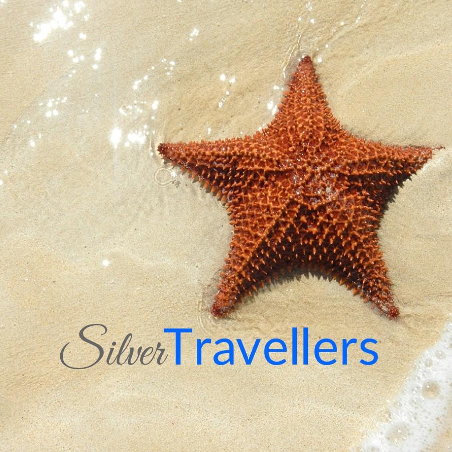 Avatar - SilverTravellers.de