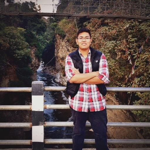 Avatar - Swodesh Shakya