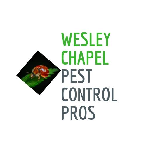 Avatar - Wesley Chapel Pest Control Pros