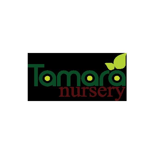Tamara Nursery - cover