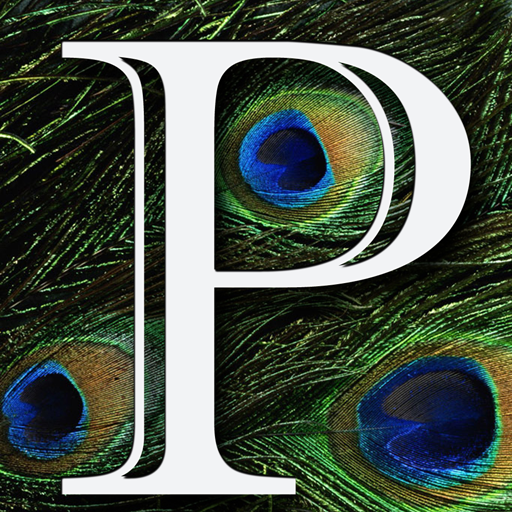 Avatar - Tim Peacock