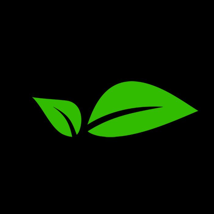 Avatar - Thrive Nigeria