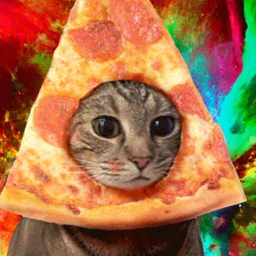 Avatar - PizzaCat