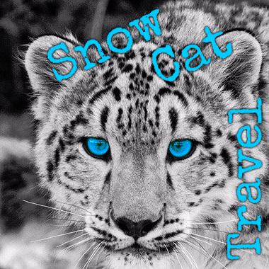Avatar - Snow Cat Travel