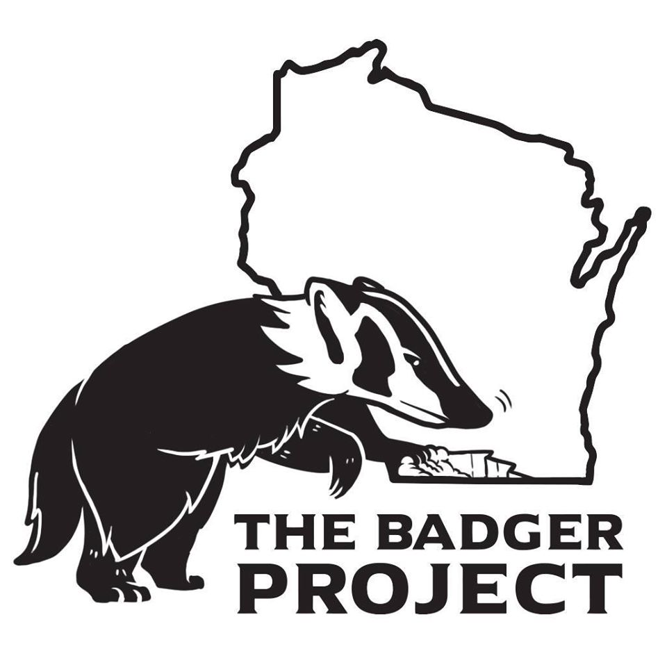 Avatar - The Badger Project