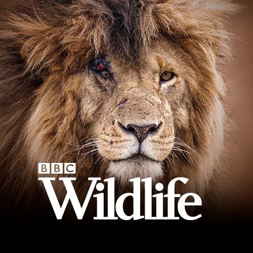 Avatar - BBC Wildlife Magazine