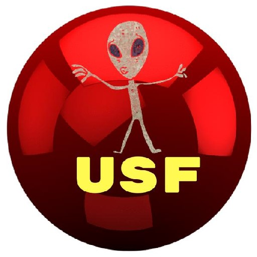 UFO SIGHTINGS FOOTAGE - cover