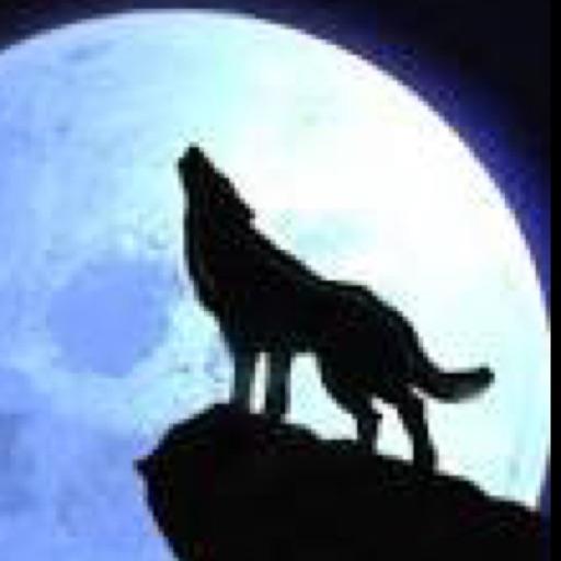 Avatar - WolfLover113