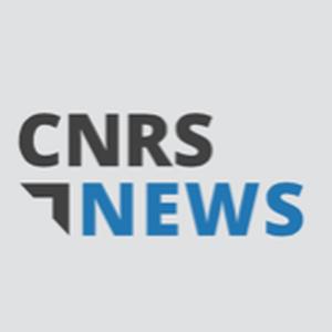 Avatar - cnrsnews
