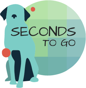 Seconds to Go - cover