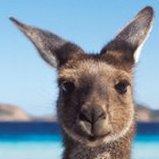 Avatar - See Australia