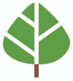 Avatar - maplewoodroad