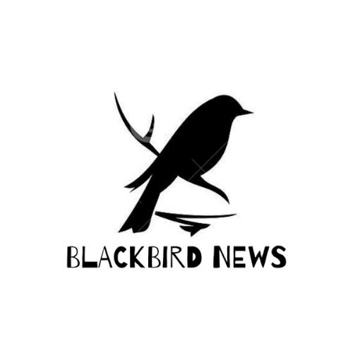 Avatar - Blackbird News