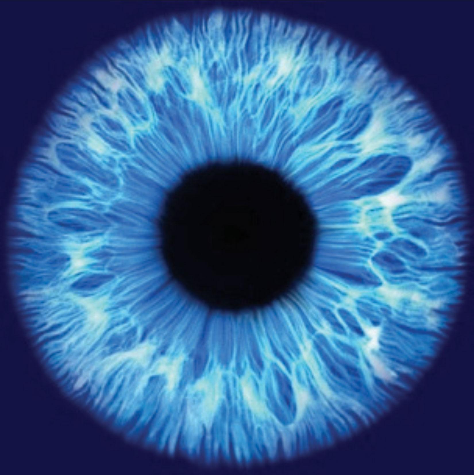 Avatar - Optometry In Hermosa Beach