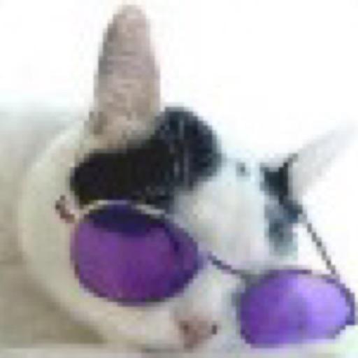 Avatar - Luckの貓