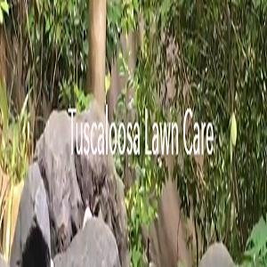 Avatar - Tuscaloosa Lawn Care