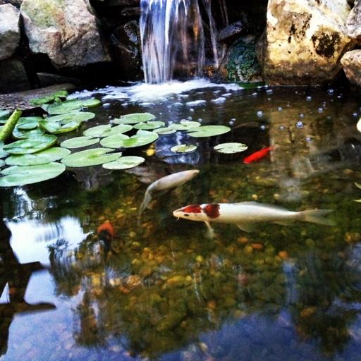 Avatar - JVI Secret Gardens