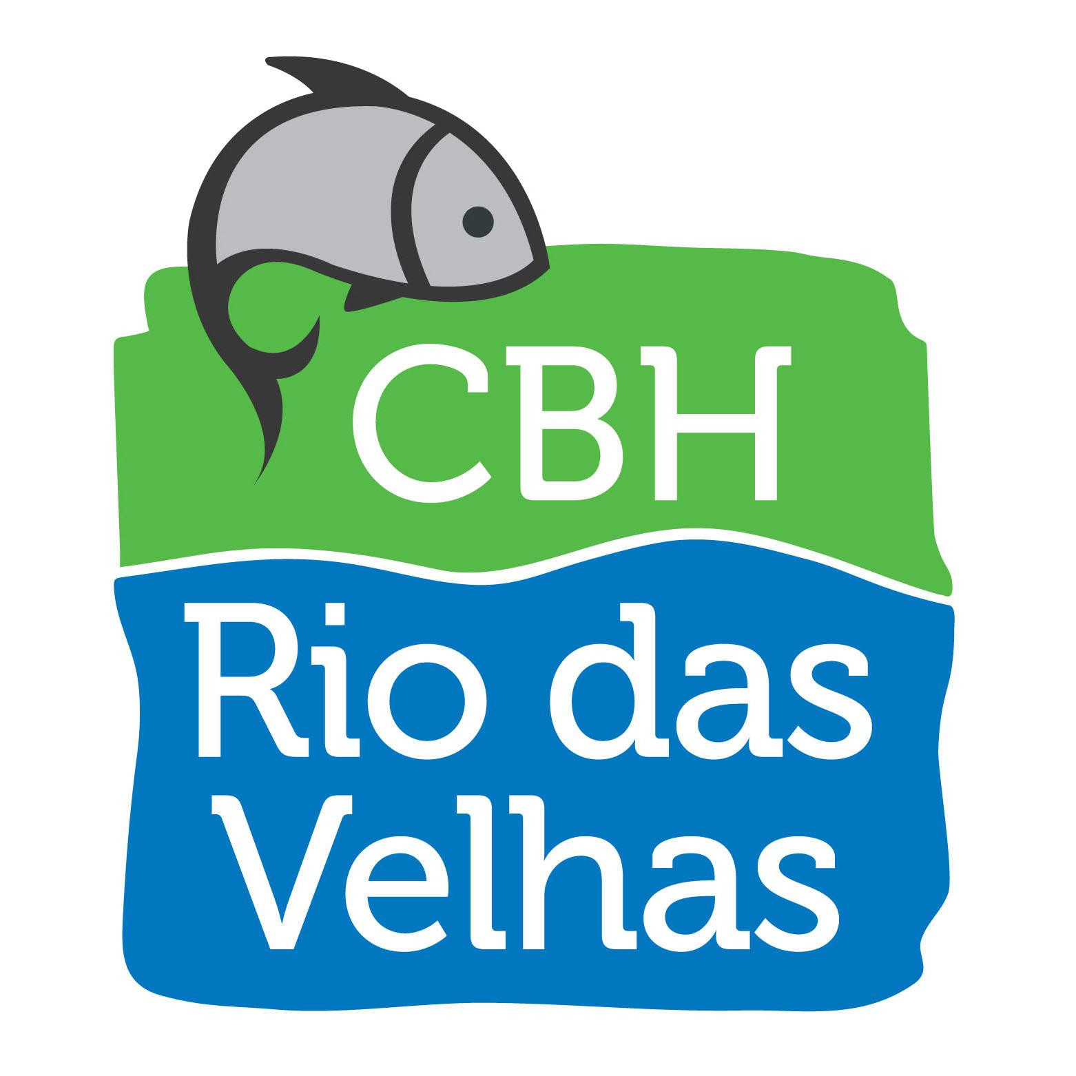Avatar - CBH Rio das Velhas