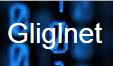 Avatar - Gliglnet