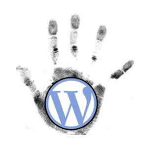 Avatar - Wordpress Italia