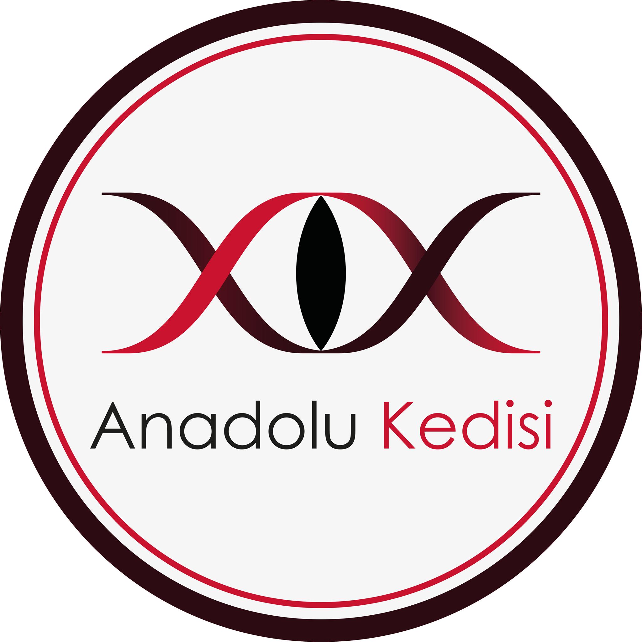 Avatar - Anadolu Kedisi