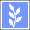 Avatar - Linka Sites