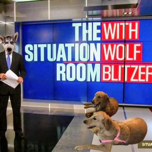 Woof Blitzer - cover